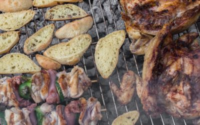BBQ Foods You Can Enjoy While Watching Feline Pals